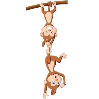 Dibujos animados graciosos mono
