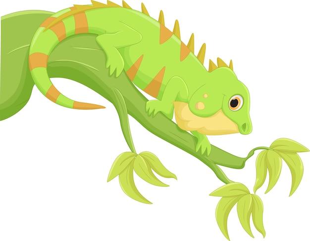 Dibujos animados de iguana