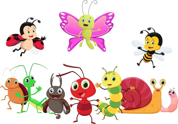 Dibujos animados de insectos feliz aislado sobre fondo blanco
