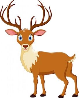 Dibujos animados lindo ciervo