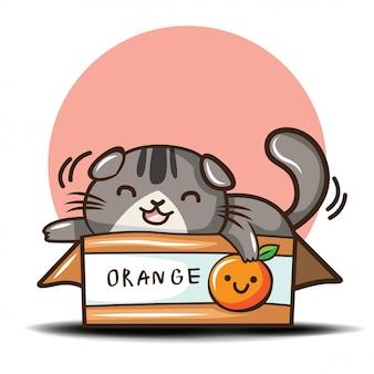 Dibujos animados lindo gato scottish fold
