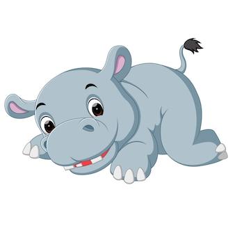 Dibujos animados lindo hipopótamo