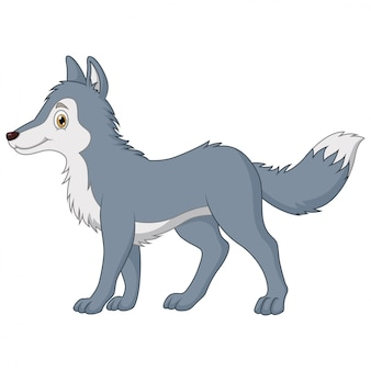 Dibujos animados lindo el lobo caminando