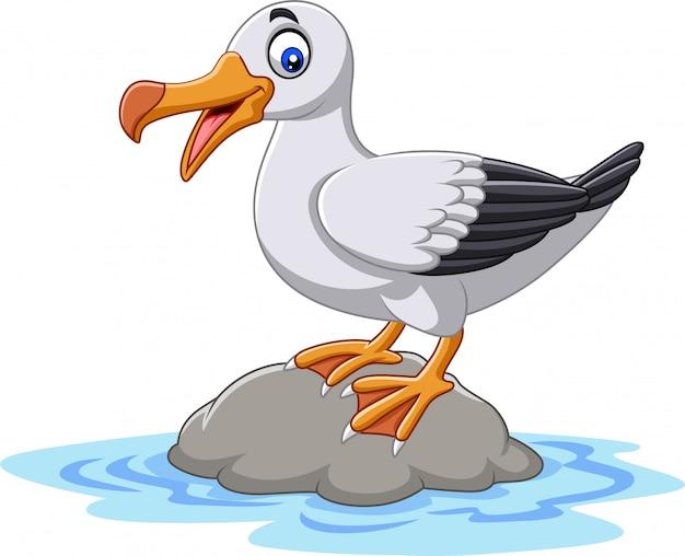 Dibujos animados lindo pájaro albatros de pie sobre una roca