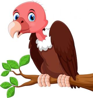Dibujos animados lindo pájaro buitre