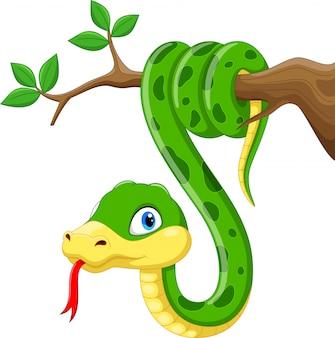 Dibujos animados lindo serpiente verde en rama