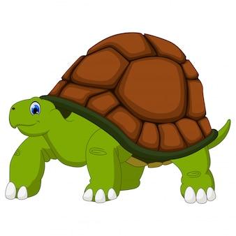 Dibujos animados lindo tortuga en blanco