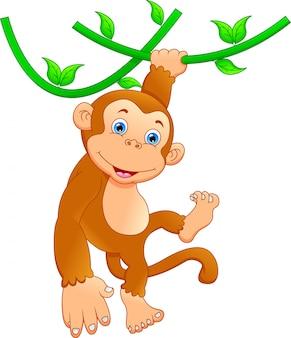 Dibujos animados mono lindo
