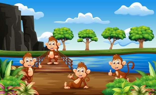 Dibujos animados de monos colgando en el puente de madera