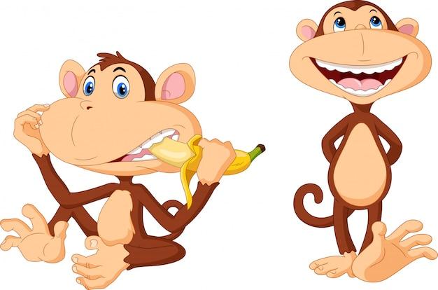 Dibujos animados de monos lindos