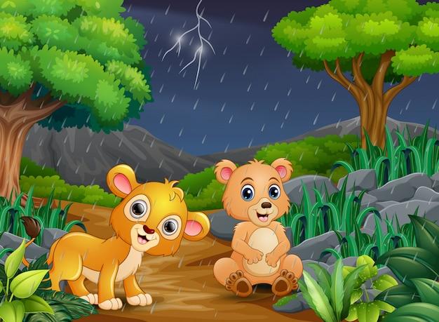 Dibujos animados de un oso y bebé león en un bosque bajo la lluvia