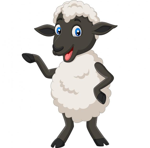 Dibujos animados de ovejas lindas posando aislado