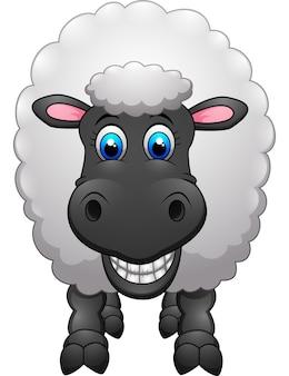 Dibujos animados de ovejas lindas