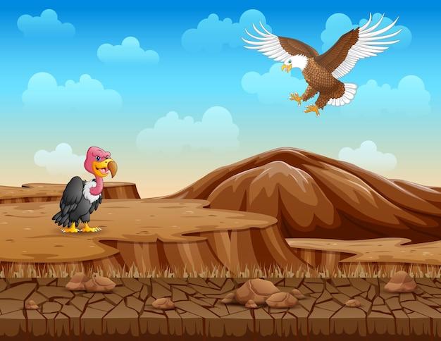 Dibujos animados de un pájaro avestruz y un águila en la tierra seca
