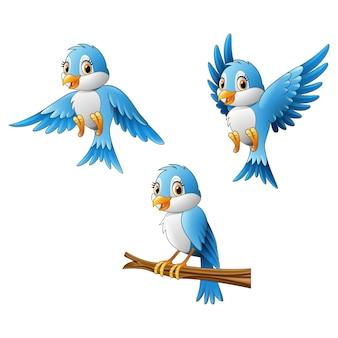 Dibujos animados de pájaro azul