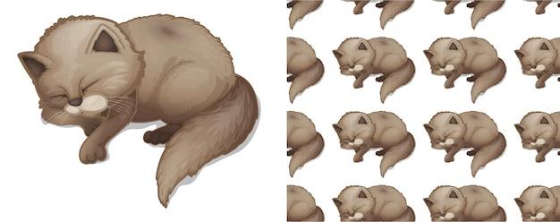 Dibujos animados de patrón animal gato dormido aislado