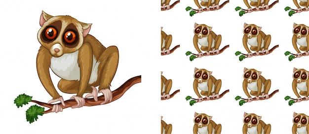 Dibujos animados de patrón de lémur transparente y aislado
