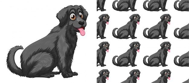 Dibujos animados de patrón de perro transparente y aislado