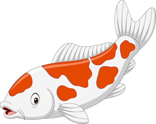 Dibujos animados de peces koi en blanco