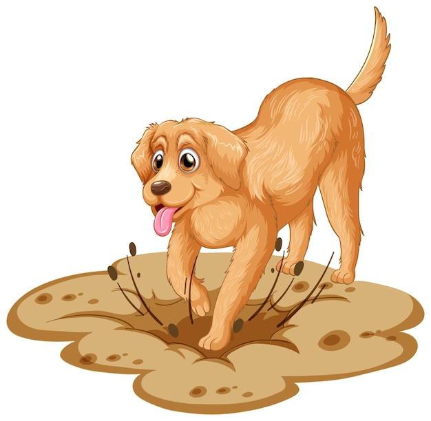 Dibujos animados de perro golden retriever sobre fondo blanco
