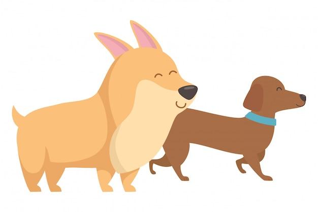 Dibujos animados de perros