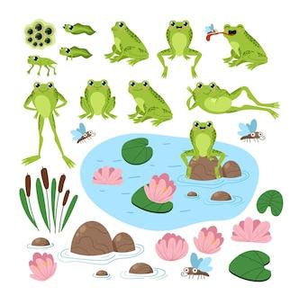 Dibujos animados de ranas lindas en diferentes posiciones cerca del lago establece ilustración gráfica de estilo moderno de dibujos animados planos