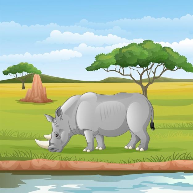Dibujos animados de rinocerontes africanos en la sabana