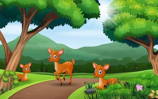 Dibujos animados de tres ciervos jugando en la naturaleza