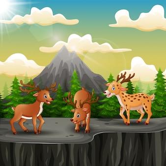 Dibujos animados de tres ciervos en la montaña un acantilado
