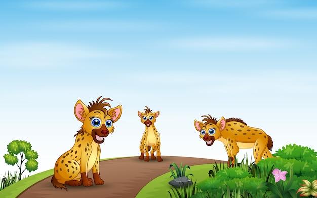 Dibujos animados de tres hiena jugando en la naturaleza.