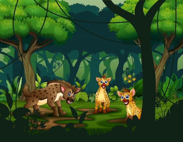 Dibujos animados de tres hienas en una selva tropical
