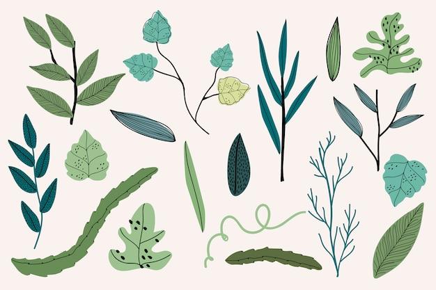 Dibujos de hojas retro
