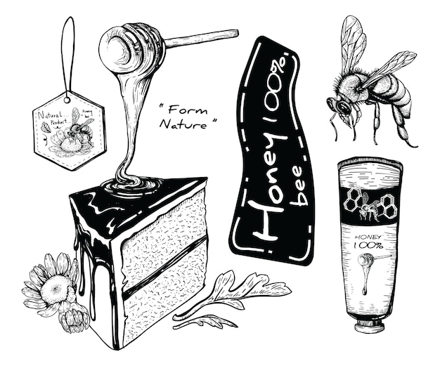 Dibujos de miel