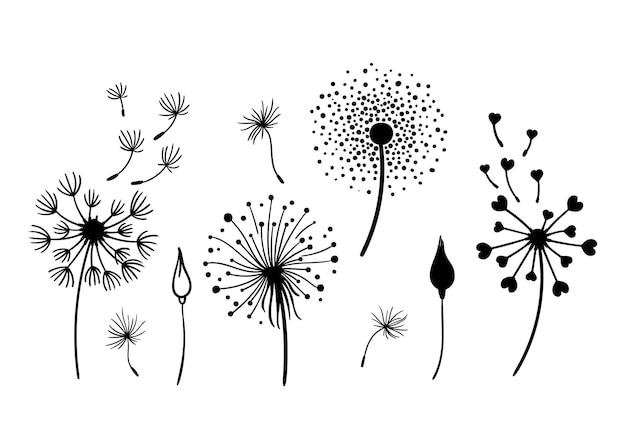 Diente de león, blanco y negro, clipart, paquete, elegante, verano, flores silvestres, conjunto, vector, ilustración