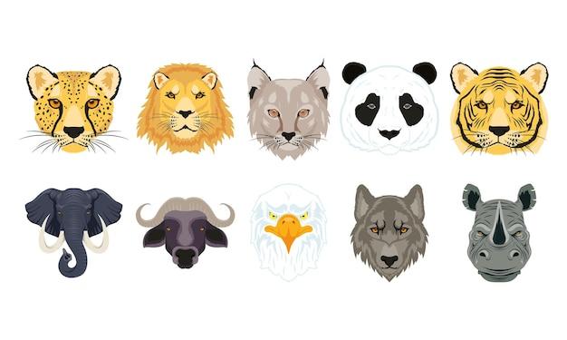 Diez cabezas de animales salvajes personajes de fauna.