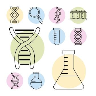 Diez iconos de conjunto genético de adn