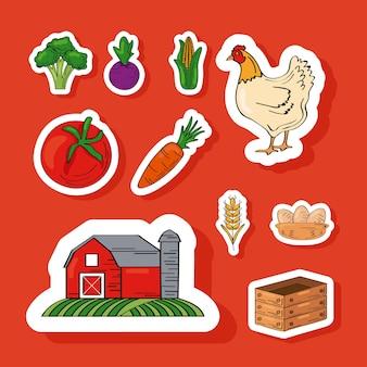 Diez productos frescos de granja.