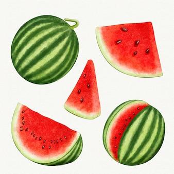 Diferentes ángulos de fruta de sandía.