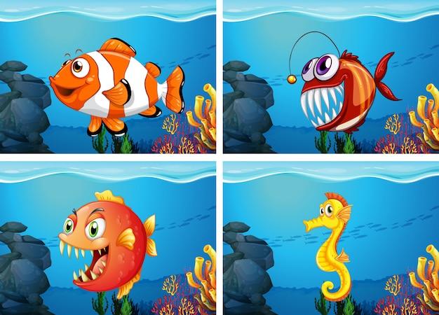 Diferentes animales marinos en el mar.
