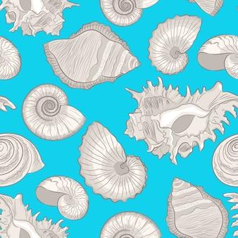 Diferentes conchas