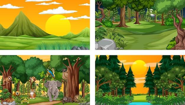 Diferentes escenas de la naturaleza del bosque y la selva tropical con animales salvajes.