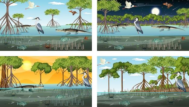 Diferentes escenas de paisaje de bosque de manglar con animales.