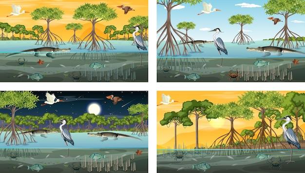 Diferentes escenas de paisajes de bosques de manglares con animales y plantas.