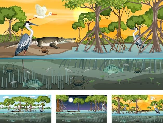 Diferentes escenas de paisajes de manglares con varios animales.