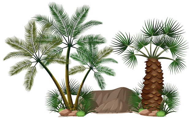 Diferentes palmeras con elementos de la naturaleza.