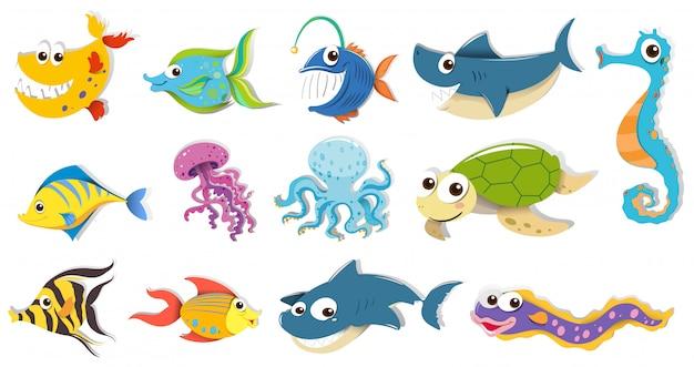 Diferentes tipos de animales marinos.