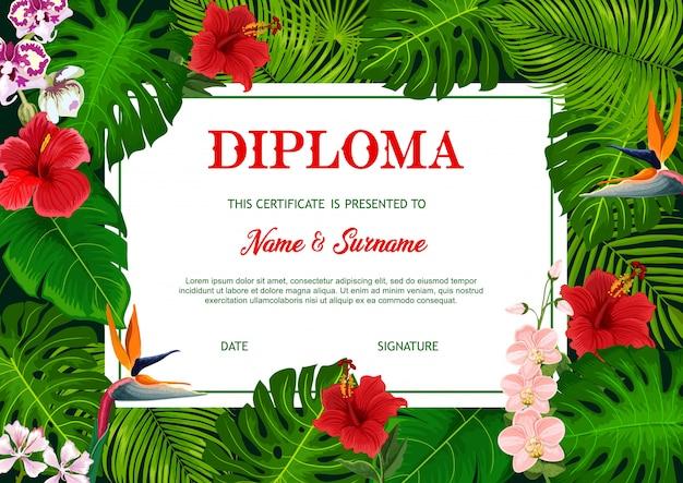 Diploma escolar con hojas de palmeras tropicales vectoriales