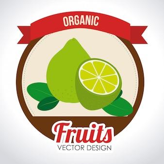 Diseño de alimentos