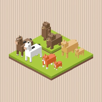 Diseño animal isométrica concepto de naturaleza, ilustración vectorial