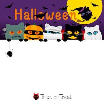 Diseño de banner de disfraces de halloween gatos con espacio de copia